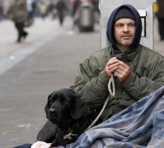 hajlektalan(1)(960x640)(5).jpg (hajléktalan, )