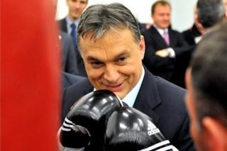 orbán viktor bokszol (orbán viktor )