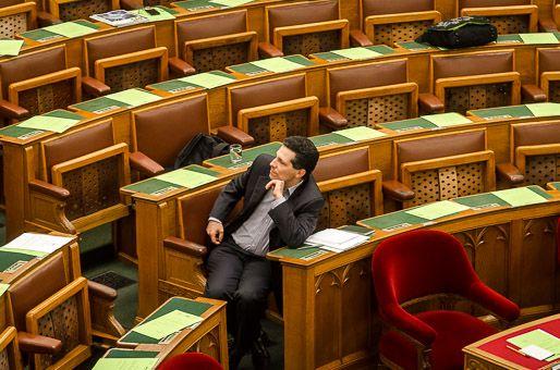 Schiffer András, parlament (Schiffer András, parlament)