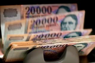 Forint(1)(960x640)(2).jpg (forint)
