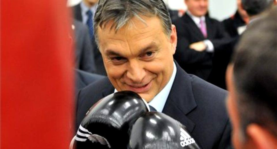 orban-viktor-bokszol(430x286)(1).jpg (orbán viktor )
