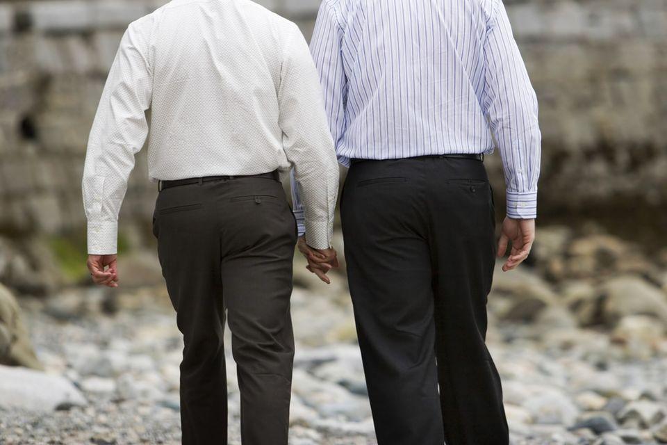 Melegházasság (melegházasság, )