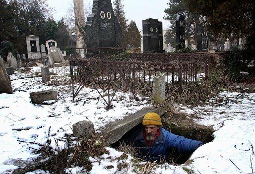 bratislav stojanovic (bratislav stojanovic, hajléktalan, sírkamra, )