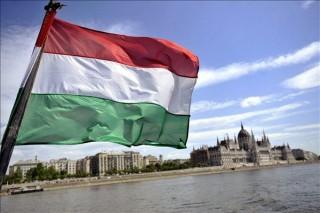 magyar zászló (magyar zászló, )
