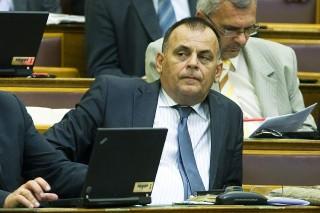 Varga István Fidesz (Varga, István, Fidesz)