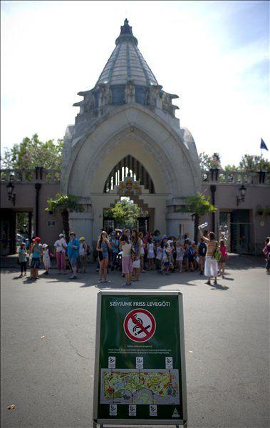 Állatkert (állatkert,)