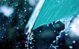 esernyő (esernyő, eső, )