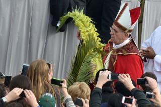 Ferenc pápa (ferenc pápa, pápa, )