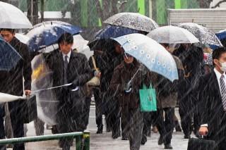 japán hóvihar (japán, havazás, hóvihar, )