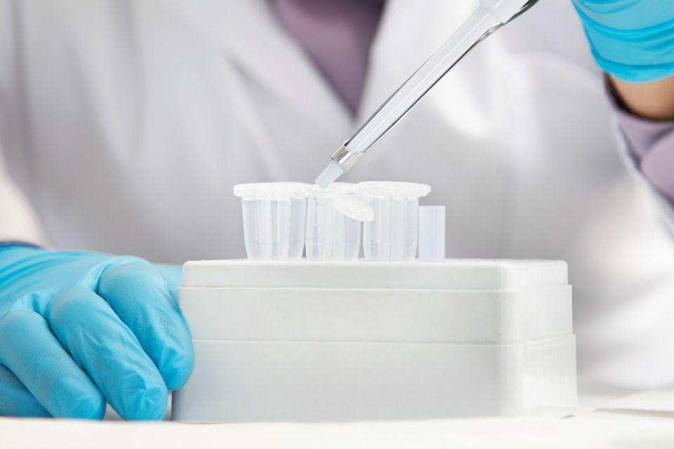 laboratórium (kísérlet, )