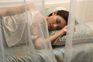 alvás (alvás, )