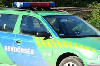rendőrautó (ingyenes, )