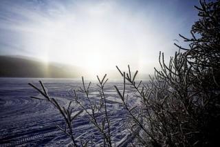 tél (tél, )