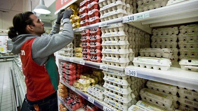 Diákmunka, tojás (diákmunka, tojás)