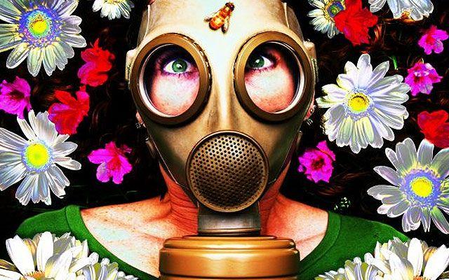 allergia (allergia, )
