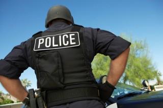 police (police, )