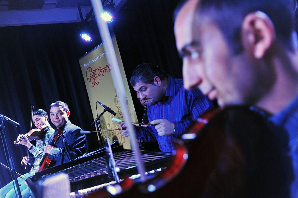 roma hungarica (roma hungarica, cigány zenész)