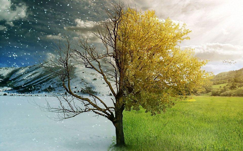 tél nyár (tél, nyár, )