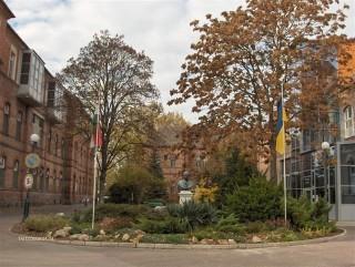 Erzsébet Kórház (kórház, vásárhely, hódmezővásárhely)