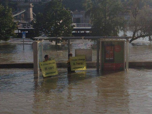 Greenpeace (greenpeace, árvíz 2013, )