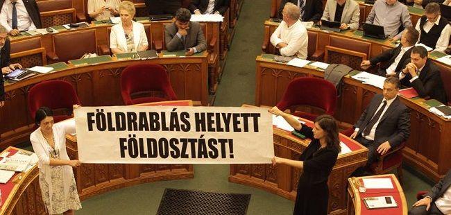 Parlament tüntetésLMP (lmp)