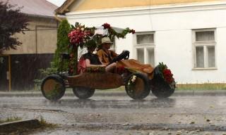 Szőregi rózsafesztivál (szőregi rózsaünnep, szőreg, rózsa, vihar)