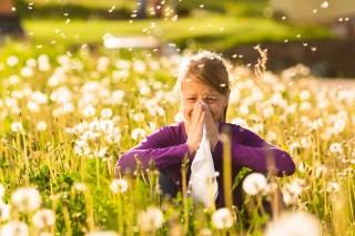 allergia (allergia)