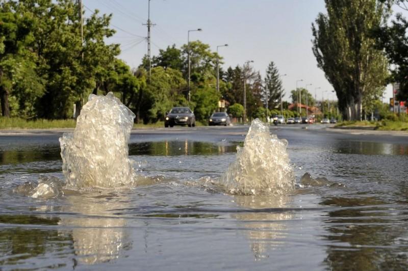 árvíz (árvíz)
