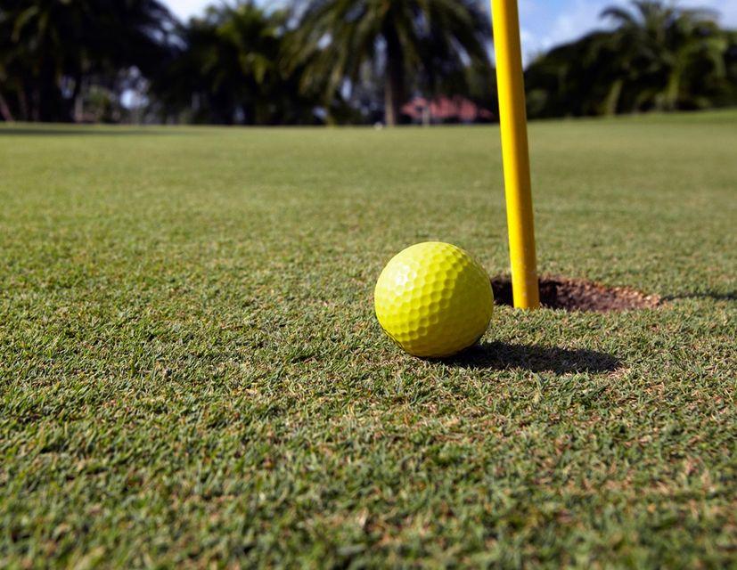 golf (golf, golflabda, )