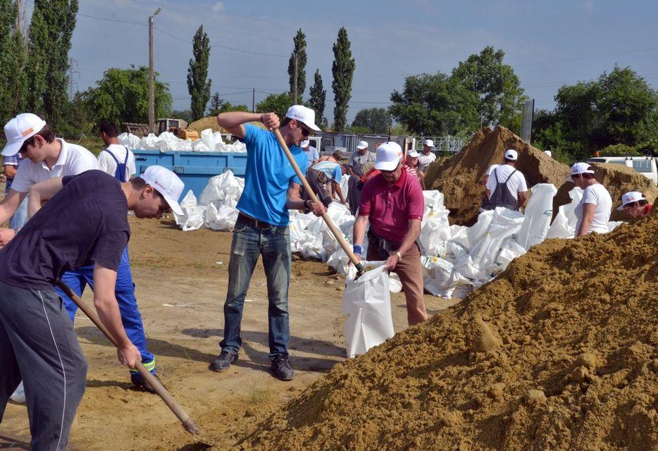 önkéntesek (önkéntesek)