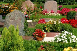 temeto(960x640)(1).jpg (temető, )