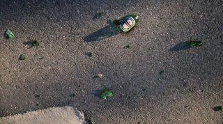 törött-sörösüveg (törött sörösüveg)