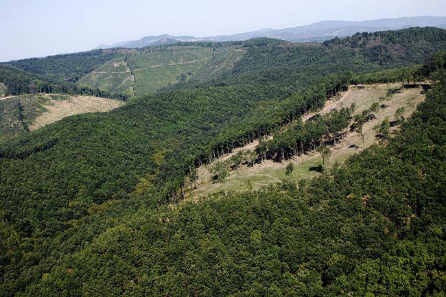 Bükki Nemzeti Park (Bükki Nemzeti Park)