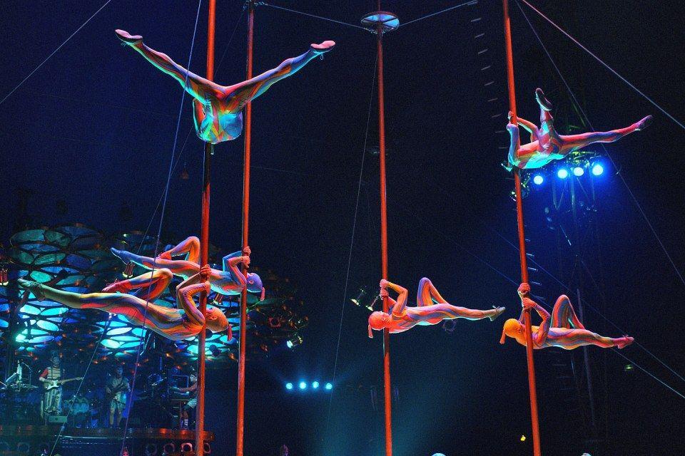 Cirque du Soleil (Cirque du Soleil)