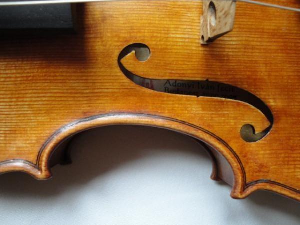 hegedű (hegedű, )