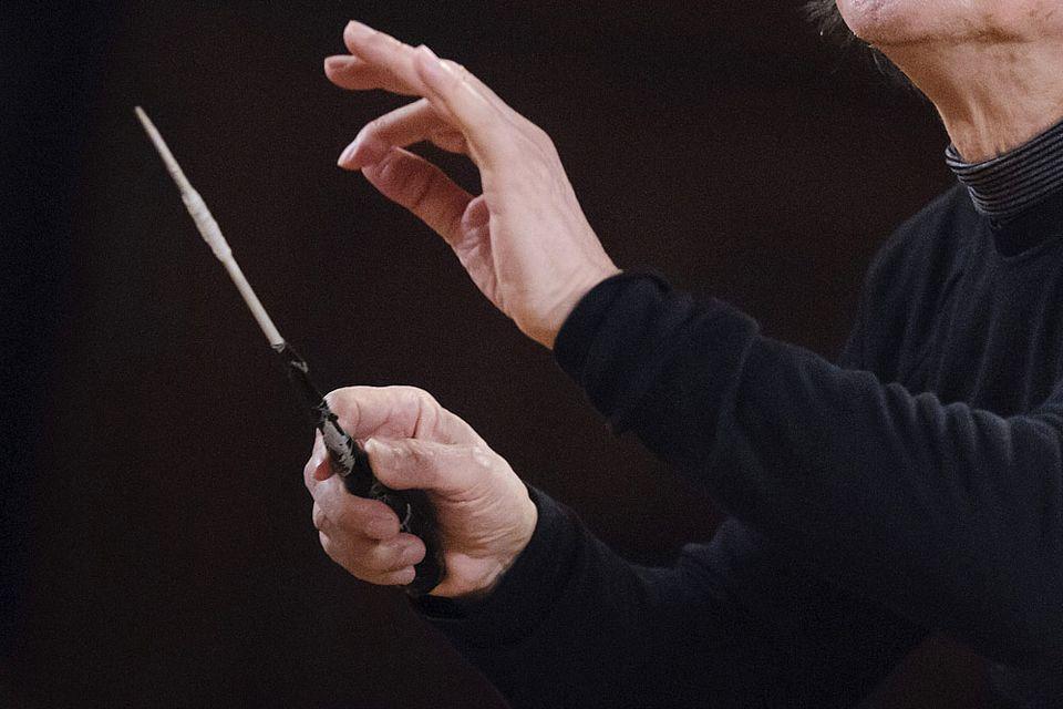 karmesteri pálca (karmester, karmesteri pálca)