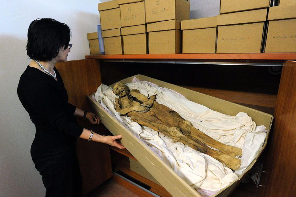 múmia kislány (múmia kislány)
