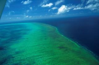nagy-korallzátony (nagy-korallzátony)