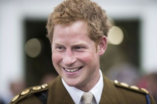 Harry herceg (harry herceg)