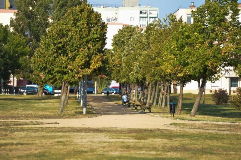 Királyok Parkja (Királyok Parkja)