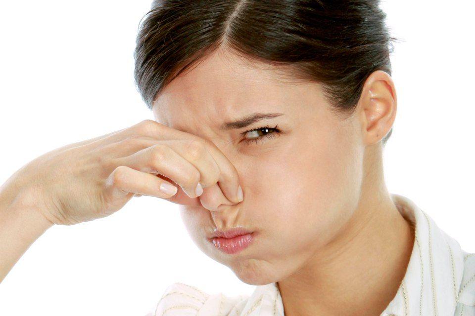 bűz szag orr (szag, orr)