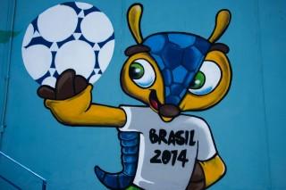 labdarúgó világbajnokság 2014 (foci vb 2014, fuleco, )