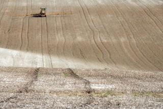 traktor (traktor, munkagép, szántás, )