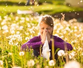 tüsszögés allergia (allergia, tüsszögés)