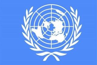 ENSZ(960x640)(1).jpg (ENSZ, zászló, logó, )