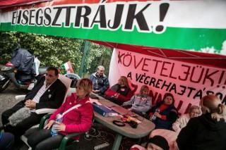 Éhségsztrájk (éhségsztrájk)