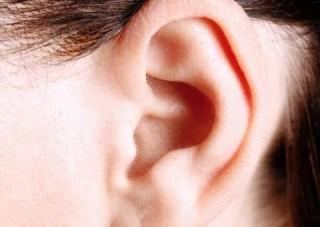 Fül (Fül)