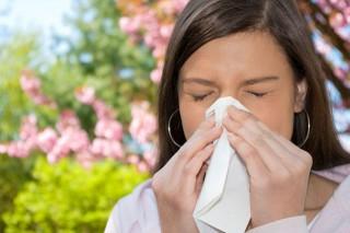 allergia(430x286)(1).jpg (allergia)