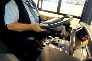 bkv busz sofőr (bkv, buszsofőr, )