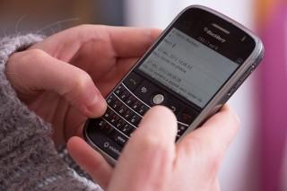 blackberry (blackberry)